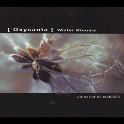 Little Science by A.Testa M.Piazza Mahiane - Oxycanta - Winter Blooms Ultimae Records 2007