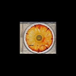 A.Testa/Gaudi Matré Térra - Juice (CD, Comp) Irma 1999